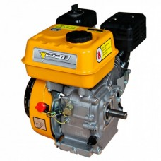 Бензиновый двигатель Forte F210G (79727)